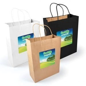 Express Paper Bag - large size