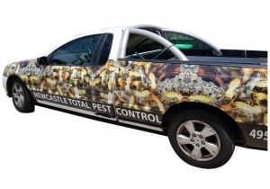 Pest truck vehicle vinyl wrapping